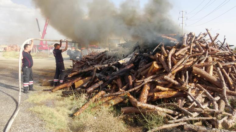 Araçtan atılan izmaritin yangına neden olduğu iddiası