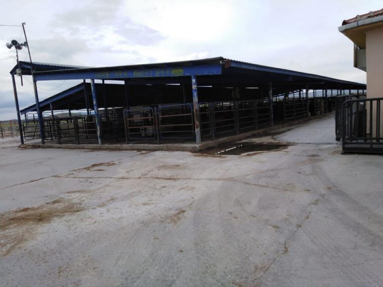 Çayırbağ'da hayvan pazarı yeniden açılıyor