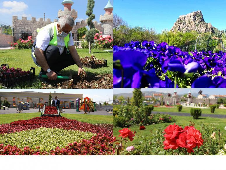 yarım milyon çiçekle kent, rengârenk oldu