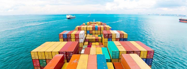 İlk 7 aylık ihracatımız 180 milyon dolar