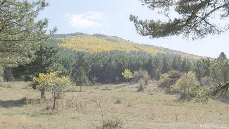 Murat Dağı'nda altın madeni aranmasına ilişkin ÇED raporunun iptali onandı