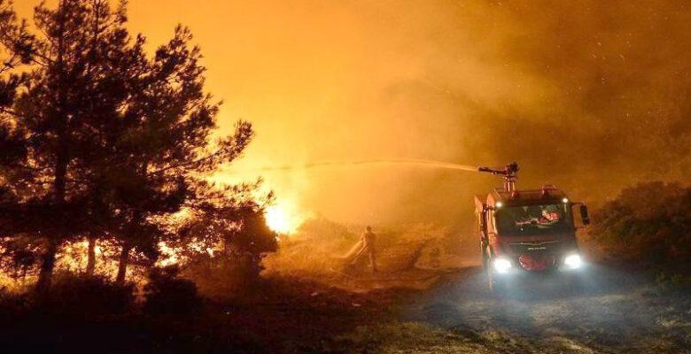 Ormanlık alanlarda ateş yakılması yasaklandı