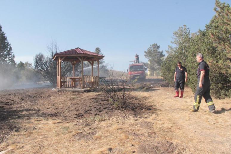 Tabiat Parkı'nda yangın çıktı