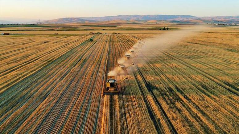 Tarımsal girdi fiyat endeksi (Tarım-GFE) yıllık %8,97, aylık %0,47 arttı
