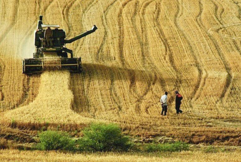"""""""Dünya Çiftçiler Günü'nde Şekerbank'tan """"Çiftçi Destek Paketi"""""""