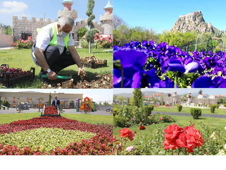 Yarım Milyon çiçek toprakla buluşturuldu