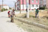 Çay Belediyesi Cedit Mahallesi Temizlik Çalışmaları Devam Ediyor