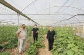 Eskişehir'in şahıs bazlı en büyük organik tarım üreticisi Sarıcakaya'dan