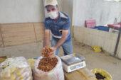 Kurutulmuş elmanın fiyatı 5,5 TL'ye yükseldi