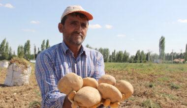 patates satış fiyatları üreticisinin yüzünü güldürüyor