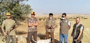 Farklı illerden av için Eskişehir'e gelen şüpheliler suçüstü yakalandı