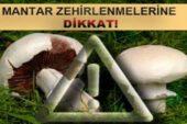 Emet'te mantar zehirlenmelerine karşı uyarı
