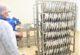 İşletmeler ve pazar yerlerinde balık denetimi yapıldı