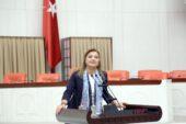 Milletvekili Köksal'a yeni görev
