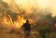 Afyonkarahisar'da ormanlara girişler yasaklandı