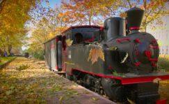ESOGÜ'de tablo gibi sonbahar manzaraları