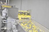 Yıllık 25 bin ton patates işliyorlar