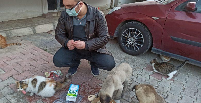 Sokak hayvanları için harekete geçti, mahalle sakinleri onu yalnız bırakmadı