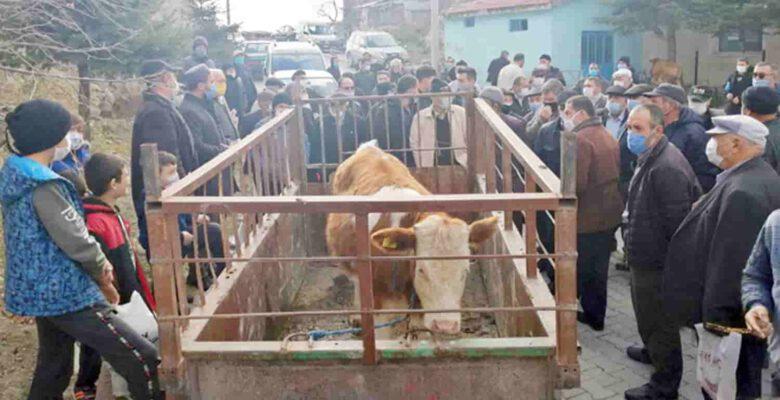 Camiye bağışlanan hayvanlar açık arttırmayla satıldı
