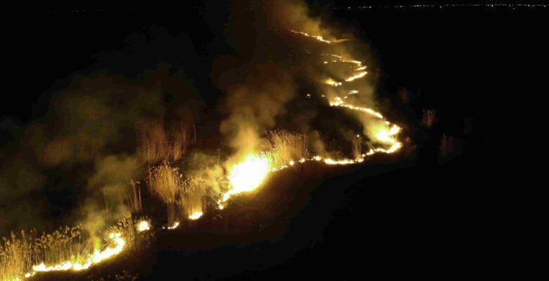 Eber Gölü'nün sularının çekildiği arazide yangın çıktı