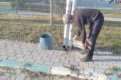 Emirdağ Belediyesi soğuk havalarda sokak hayvanlarını unutmadı