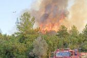 Afyon'dan Manavgat yangınına destek