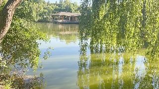 Küçük saklı cennet 'İnli Balıklı Göl'
