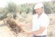 Muğla yangınının ateşi Afyonkarahisar'daki arıcıları da sardı