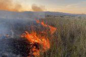 Karamık Gölü sazlık alanında yangın